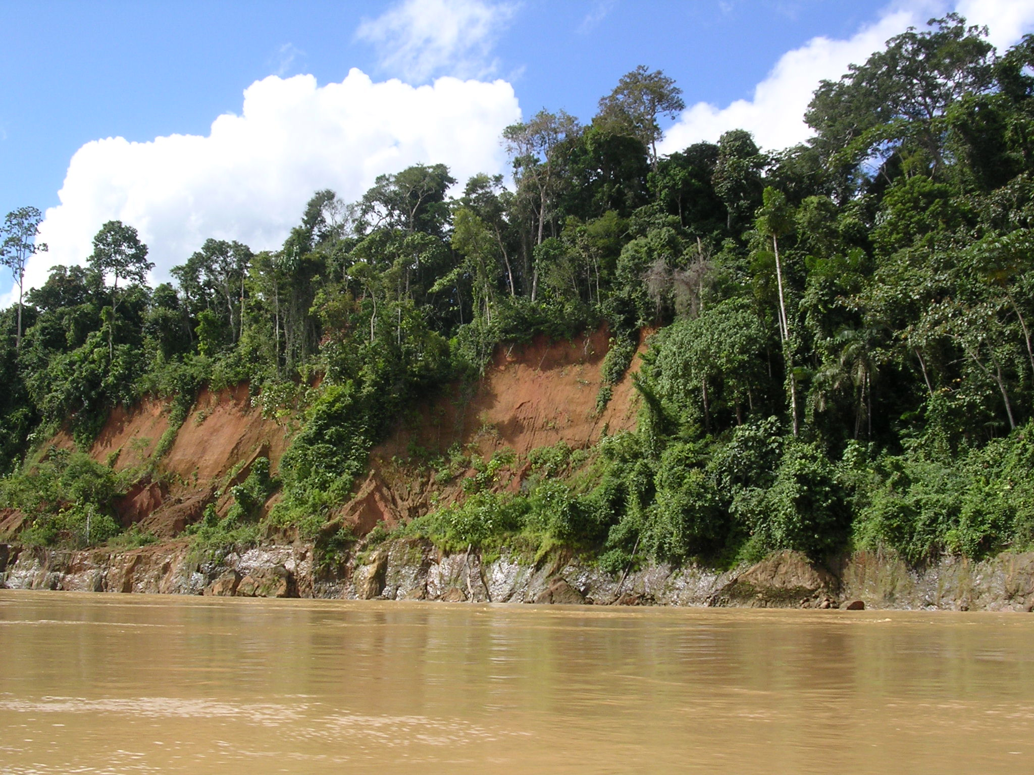 800-year-old farmers could teach us how to protect the Amazon