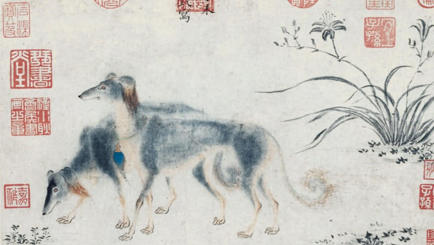 Modern dog breeds genetically disconnected from ancient ancestors