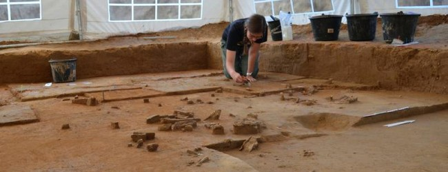 Oldest ivory workshop in the world discovered in Saxony-Anhalt