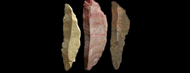 Small lethal tools have big implications for early modern human complexity