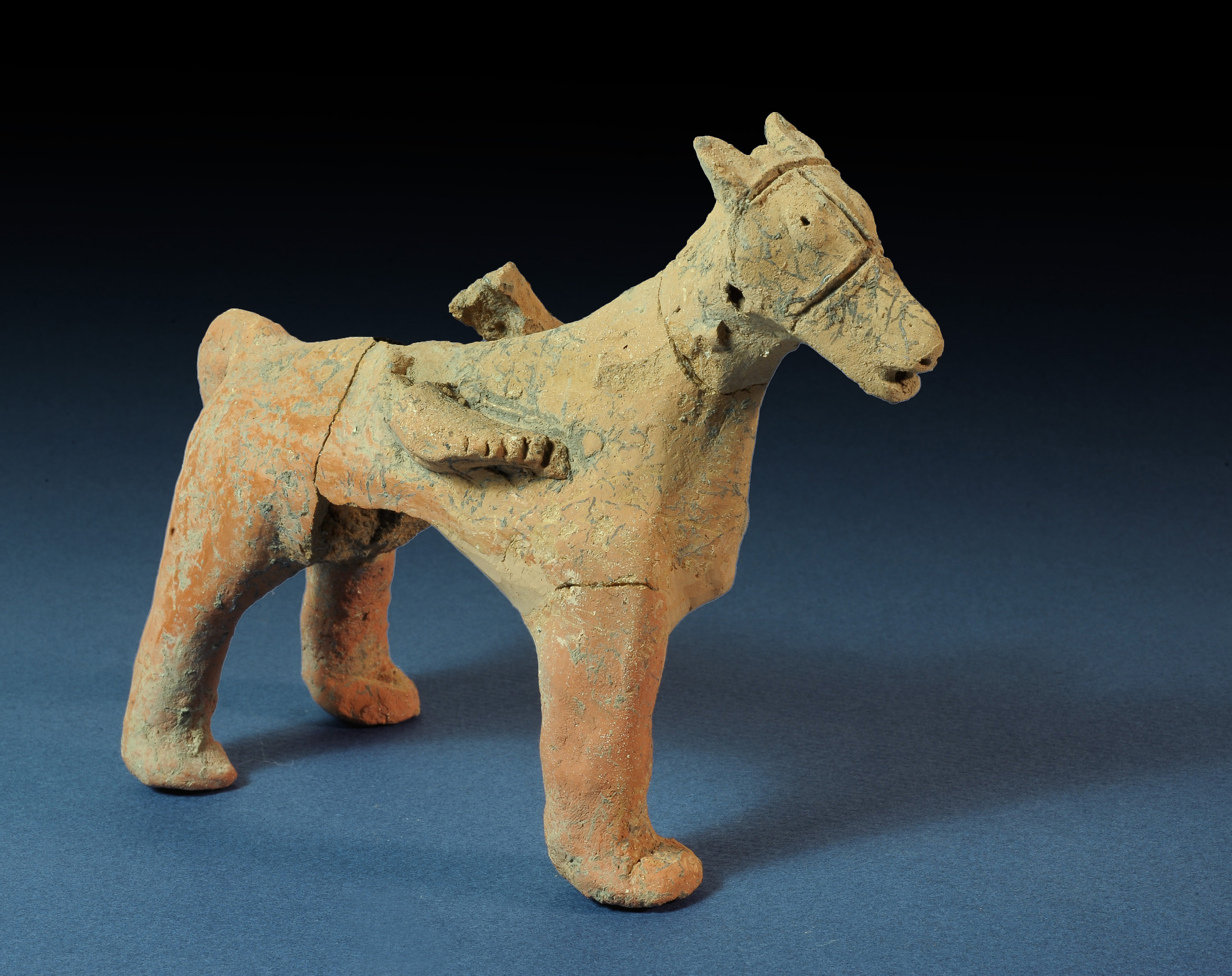 Figurine of a horse. Photograph: Clara Amit, courtesy of the Israel Antiquities Authority.