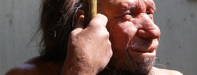 Did Neandertals have language?