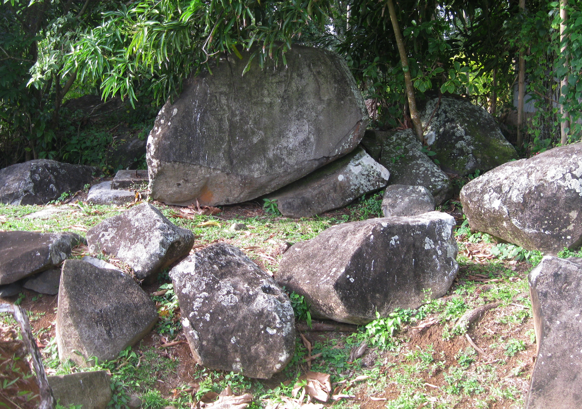 The engraved rocks of Montravail. In the center, the main rock. Photo: Sébastien Perrot-Minnot.