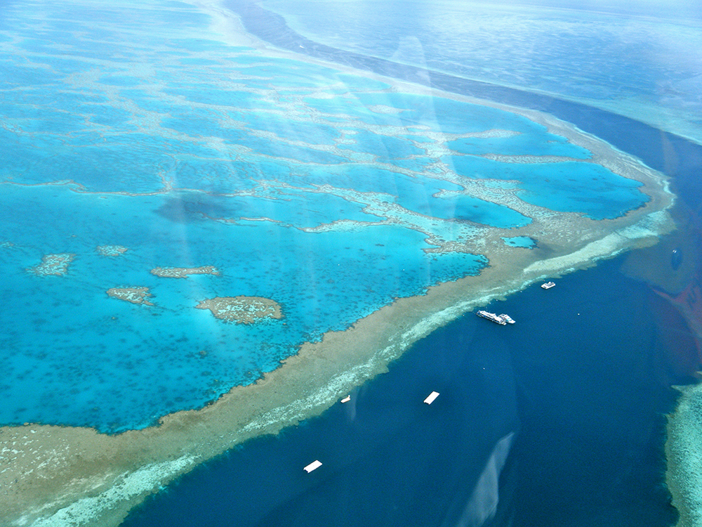 Great Barrier Reef: WikiPedia