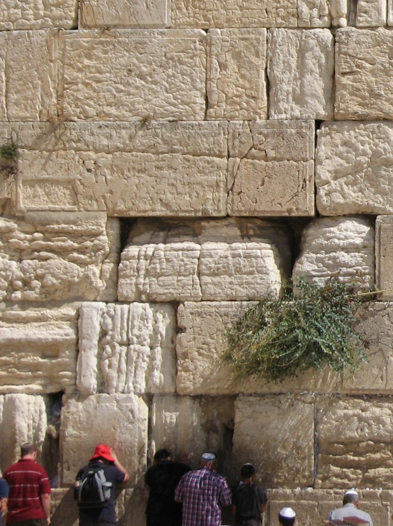 Part of the Western Wall showing highly eroded blocks alongside well preserved stones. (Photo: Dr. Simon Emmanuel, Hebrew University)