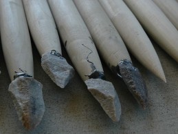 Stone-tipped spears lethal, may indicate early cognitive and social skills