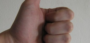 Non-dominant hand vital to the evolution of the thumb