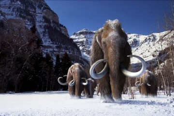 Credit: Giant Screen Films © 2012 D3D Ice Age, LLC