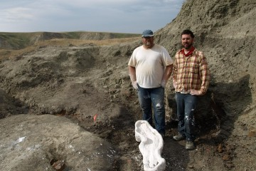 Dr. Michael Ryan (left) of the Cleveland Museum of Natural History and Dr. David Evans (right) of the Royal Ontario Museum, are co-authors of research describing Wendiceratops pinhornensis. Credit : Derek Larson