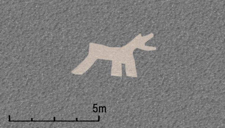 Newly found geoglyphs of animals believed to depict llamas