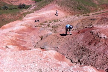 Researchers scour Turkish hills for fossils from the Middle Eocene Climactic Optimum. Images courtesy Christopher Beard.
