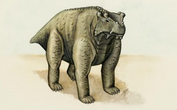 About the same size as a cow, this pre-reptile also stood the same way -- upright with its legs underneath. It may be the earliest known creature to do so, according to a new study. CREDIT : Morgan Turner