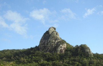 This is a volcanic plug in Cape Hillsborough National Park, Queensland. CREDIT : Mike Griinke