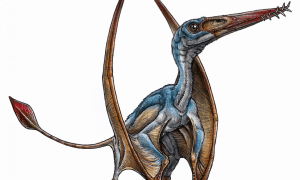 This is a paleoartist's reconstruction of a ptesosaur. CREDIT Gabriel Lío
