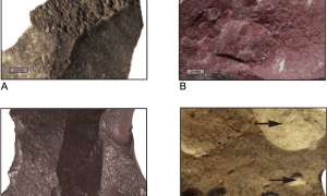 Humans living in South Africa in the Middle Stone Age may have used advanced heating techniques to produce silcrete blades, according to a study published Oct. 19, 2016 in the open-access journal PLOS ONE by Anne Delagnes from the CNRS (PACEA - University of Bordeaux, France) and colleagues. CREDIT Delagnes et al (2016)