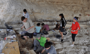 The researchers during the last excavation campaign at Barranco León site in Orce (Granada)