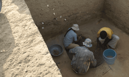 Excavating a pit from which archaeobotanical samples were collected at the Indus Civilization site of Masudpur I in northwest India. CREDIT Cameron Petrie