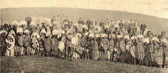 Zulu Warriors : Wiki Commons