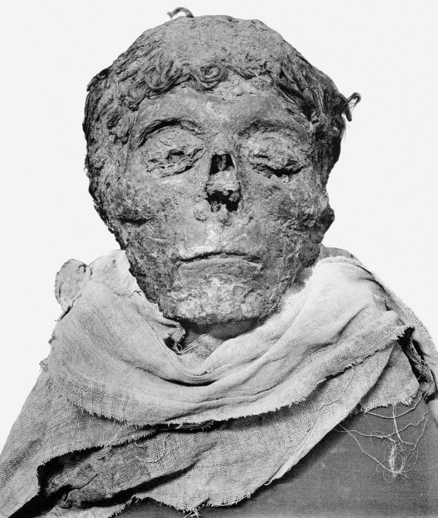 The mummified head of Ahmose : WikiPedia