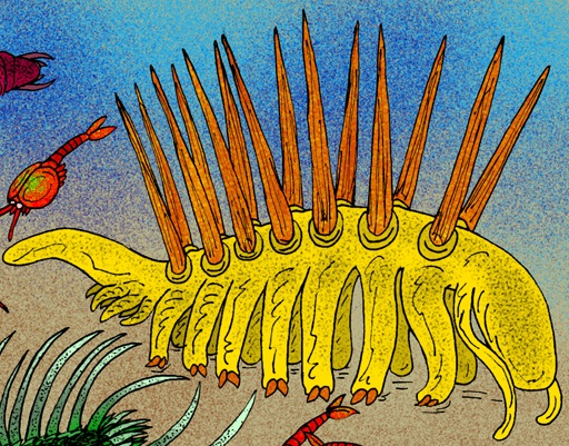 Artist's rendering of Hallucigenia according to the modern interpretation : WikiPedia