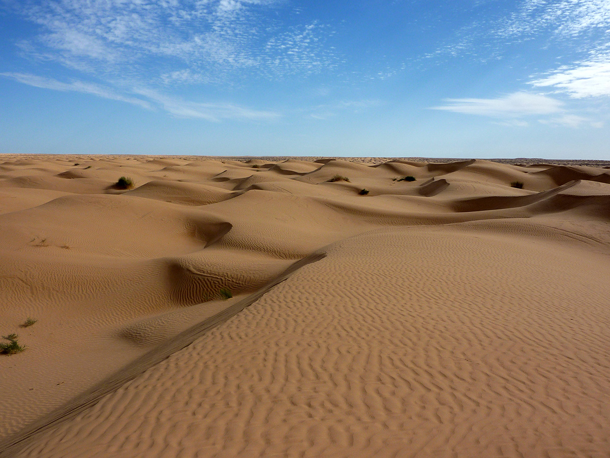 The Age Of Sahara Desert