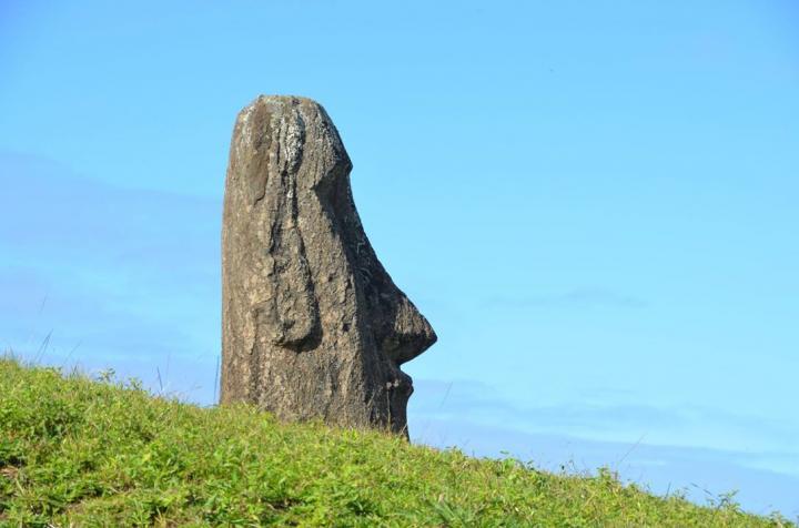 Moai Head Close Up: Natalia Solar