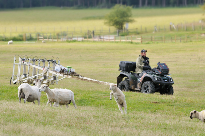 Archaeology by quad bike (sheep not included). Stonehenge Hidden Landscape Project LBIArchPRO, Author provided