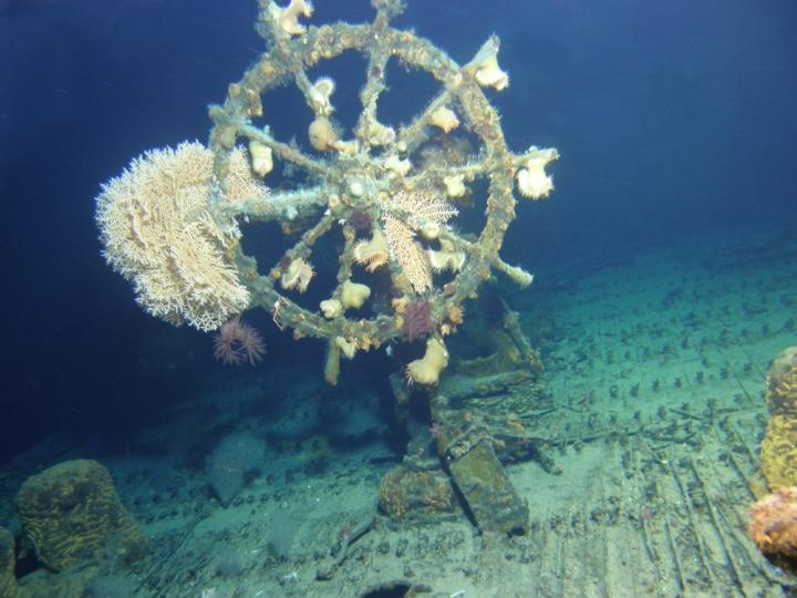 The sunken USS Kailua is surprisingly intact, including the ship's wheel, for a vessel that was sunk with a torpedo.