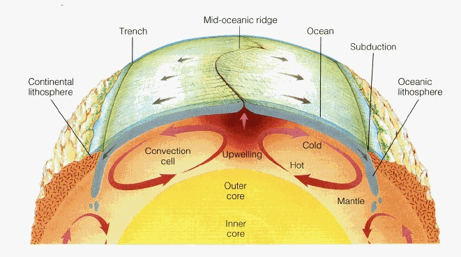 This plate tectonics diagram from the Byrd Polar and Climate Research Center shows how mantle circulation delivers new rock to the crust via mid-ocean ridges. New research suggests that mantle circulation also delivers water to the oceans.