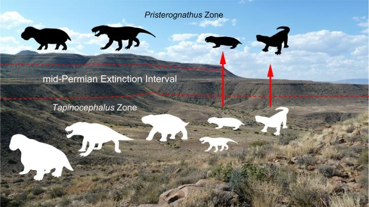 This is an illustration of the Guadalupian extinction. Credit:Wits University