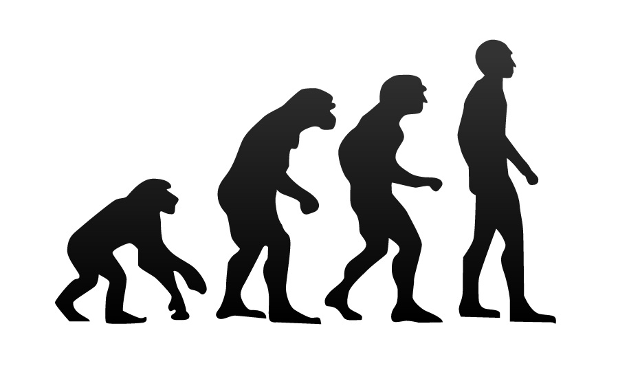 Study Reveals Human Body Has Gone Through Four Stages Of