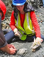 Caitlin Colleary, a doctoral student of geosciences in the College of Science at Virginia Tech, says the original color patterns of ancient animals can be determined through fossils. CREDIT : Virginia Tech