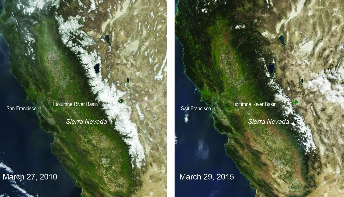 These two natural-color satellite images of the snow cover in the Sierra Nevada in California and Nevada show the last year with average winter snowfall, 2010, compared with 2015 -- a year that had the lowest snowpack in 500 years. The images were taken by the Moderate Resolution Imaging Spectroradiometer on NASA's Aqua satellite. CREDIT : NASA/MODIS