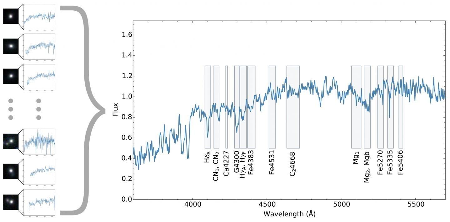 The spectra is equivalent to 200 hours of Subaru Telescope's observing time. Rectangles on the spectrum indicate spectral features, which are used to calculate the ages, the amount of heavy elements and the alpha-element abundance in the stellar populations of these galaxies. CREDIT : ETH Zurich/NAOJ