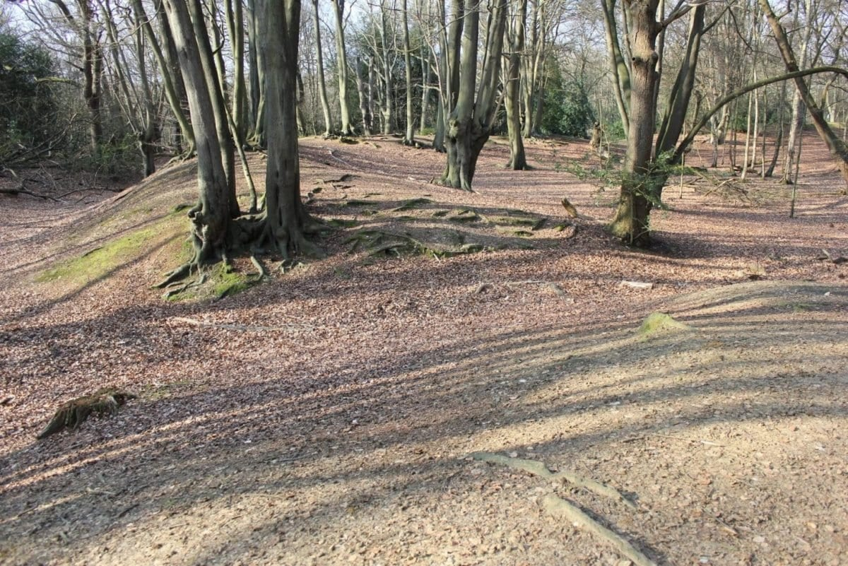 Ambresbury Banks – Iron Age Hill Fort