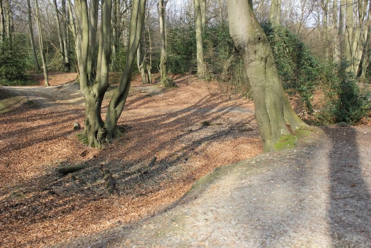 Loughton Camp Iron Age Hill Fort