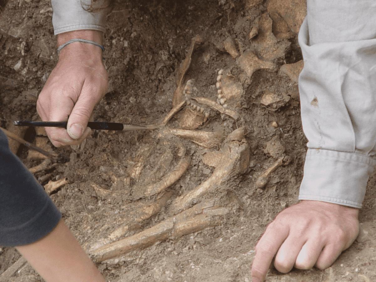Recovery of human remains at Vlasac, Serbia. CREDIT Dušan Bori?