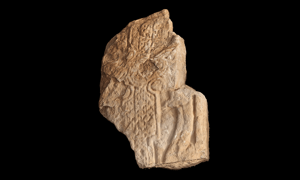 Pictish carved stone with dragon motif discovered in