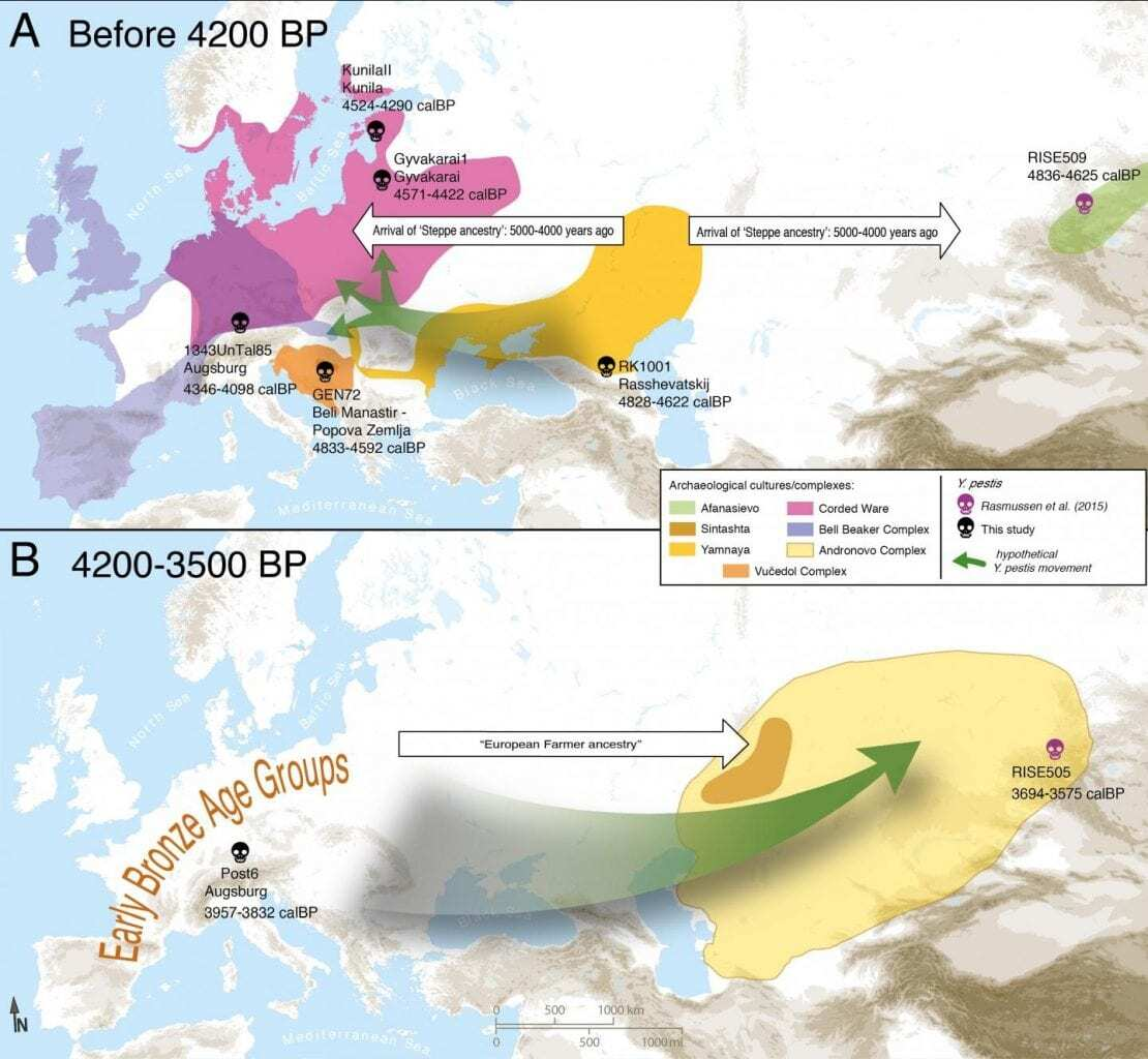 Plague likely a Stone Age arrival to central Europe - image plague2 on https://archaeologys.com