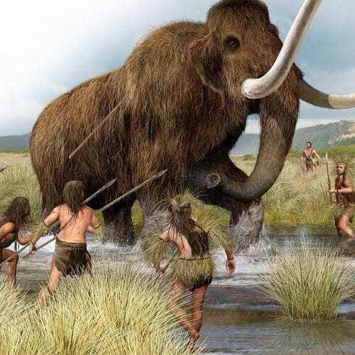 Late Miocene Ape Maxilla Upper Jaw Discovered In Western
