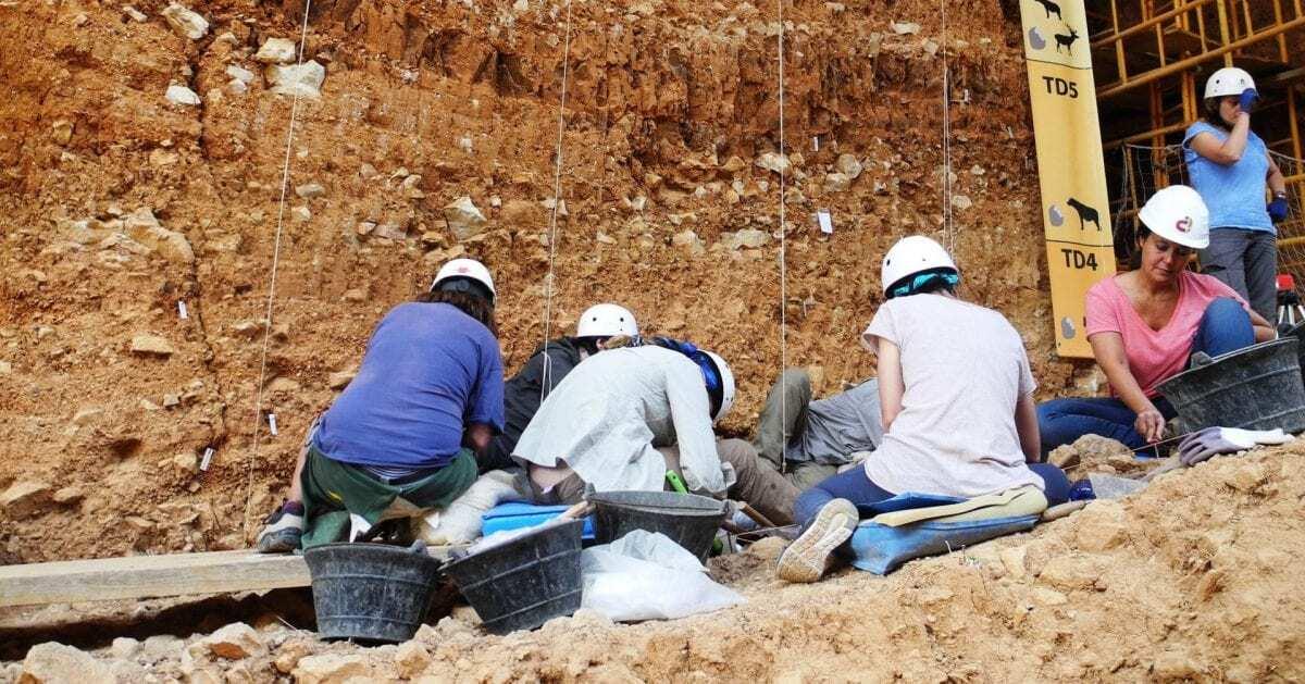 Why Study Geology? - lsu.edu