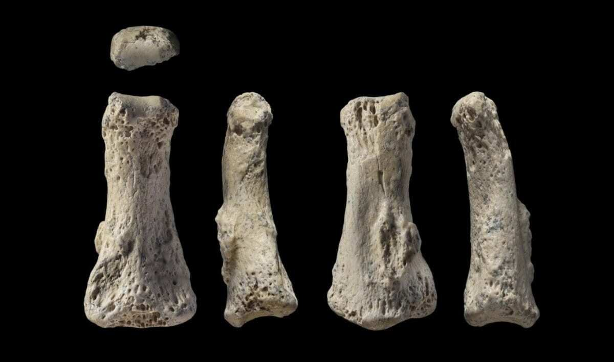 Uranium series dating archaeology fieldwork