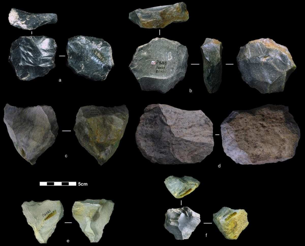 The Swiss Army Knife Of Prehistoric Tools Found In Asia