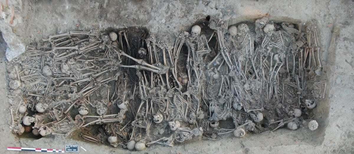 Ancient genomes provide insight into the genetic history of the second plague pandemic - HeritageDaily - Archaeology News