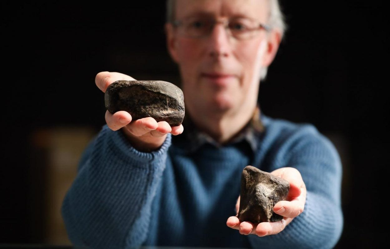 Ireland's Only Dinosaurs Discovered in Antrim - HeritageDaily