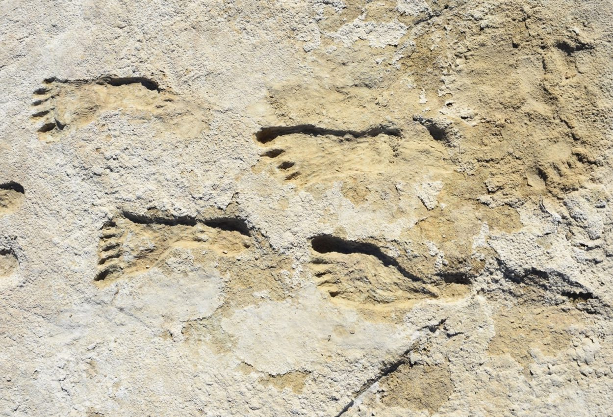Archaeologists find oldest known human footprints in the Americas - HeritageDaily